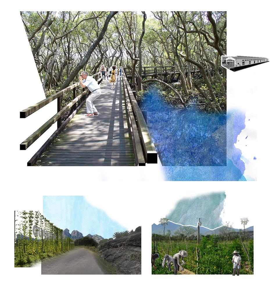 15_renderings